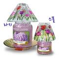 [��Űĵ�� �Ǽ��縮] ��ĵ�齦�̵�(��) Tulip Carckle/011515