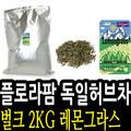 [KJ]���Ϲ�ũ ������ ���Ƽ 2kg �����012331